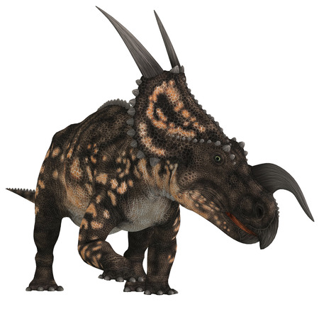 behemoth: Einiosaurus on White - Einiosaurus was a herbivorous ceratopsian dinosaur that lived in the Cretaceous Age of Montana, North America.