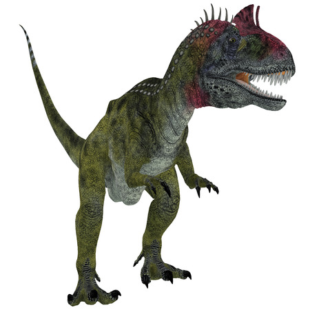 jurassic: Cryolophosaurus on White - Cryolophosaurus was a theropod dinosaur that lived in Antarctica during the Jurassic Period.
