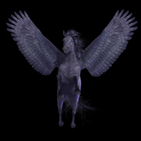 Black Pegasus on Black - Pegasus is a divine mythical creature that has the form of a winged stallion horse. Stock Photo