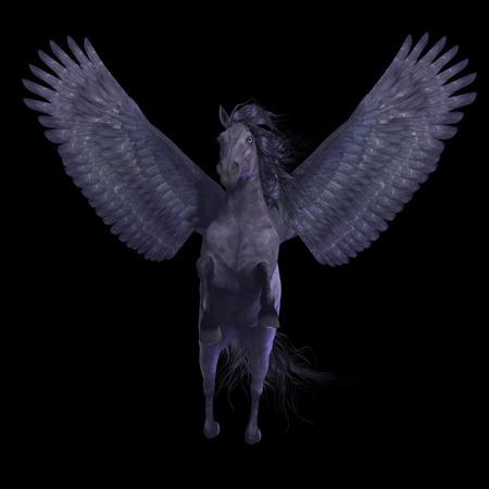 pegasus: Negro Pegasus en Negro - Pegasus es una criatura mítica divina que tiene la forma de un caballo semental alado.
