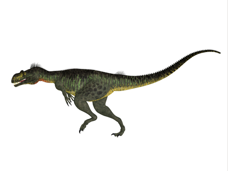 jurassic: Megalosaurus Side Profile - Megalosaurus was a large carnivorous theropod dinosaur that lived in the Jurassic Period of Europe.