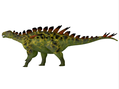species plate: Huayangosaurus Side Profile - Huayangosaurus was an armored herbivorous dinosaur that lived in the Jurassic Period of China. Stock Photo