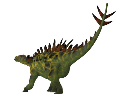 jurassic: Huayangosaurus Dinosaur Tail - Huayangosaurus was an armored herbivorous dinosaur that lived in the Jurassic Period of China.
