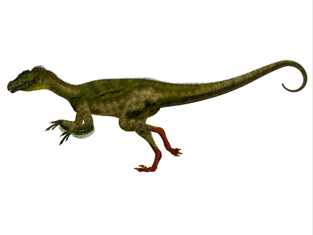 jurassic: Ornitholestes Side Profile - Ornitholestes was a small carnivorous dinosaur that lived in the Jurassic Period of Western Laurasia which is now North America.