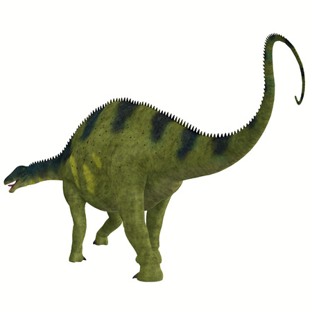 Brachytrachelopan 恐竜の尾 - Brachytrachelopan だったジュラ紀の期間の間にアルゼンチンに住んでいた草食の竜脚類恐竜です。