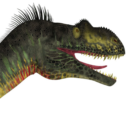 jurassic: Megalosaurus Dinosaur Head - Megalosaurus was a large carnivorous theropod dinosaur that lived in the Jurassic Period of Europe. Stock Photo