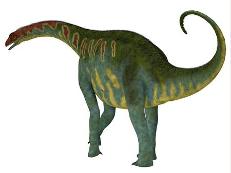 desierto del sahara: Jobaria la cola del dinosaurio - Jobaria era un dinosaurio saurópodo herbívoro que vivió en el Período Jurásico del desierto del Sahara en África.