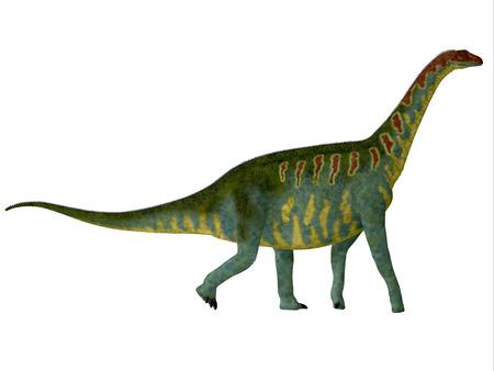 desierto del sahara: Jobaria costado Perfil - Jobaria era un dinosaurio saurópodo herbívoro que vivió en el Período Jurásico del desierto del Sahara en África.