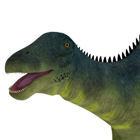 Brachytrachelopan Dinosaur Head - Brachytrachelopan was a herbivorous sauropod dinosaur that lived in Argentina during the Jurassic Period. Stock Photo