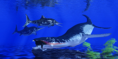 jurassic: An Ichthyosaur becomes prey for an enormous Liopleurodon marine reptile in Jurassic Seas.