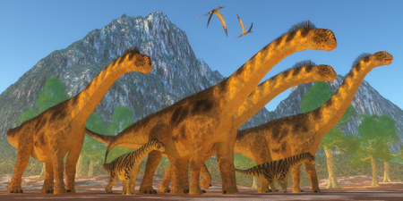 keep watch over: A Camarasaurus sauropod dinosaur herd keep watch on their offspring as two Rhamphorhynchus reptiles fly over. Stock Photo