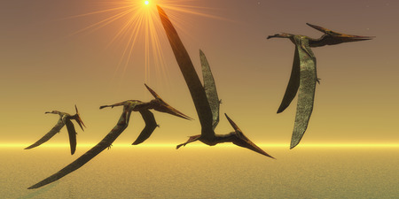 reptiles: Pteranodons are flying reptiles that lived in the Cretaceous Period of North America in Earths history.