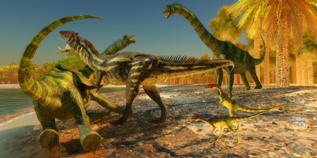 bipedal: Two Compsognathus wait as an Allosaurus dinosaur brings down a huge Brachiosaurus on the beach.