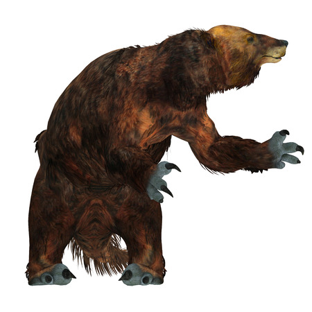 Megatherium Sloth on White - Megatherium은 홍적세 대 홍적세 시대에 중남미 지역에서 가장 큰 찌꺼기 중 하나였습니다.