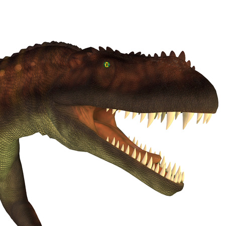 triassic: Prestosuchus Dinosaur Head - Prestosuchus was a carnivorous archosaur dinosaur that lived in the Triassic Period of Brazil.