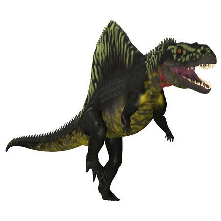 triassic: Arizonasaurus on White - Arizonasaurus was a sailback carnivorous archosaur that lived in Arizona, North America in the Triassic Period.
