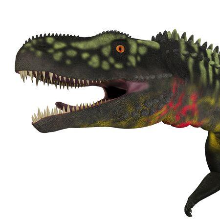 triassic: Arizonasaurus Dinosaur Head - Arizonasaurus was a sailback carnivorous archosaur that lived in Arizona, North America in the Triassic Period.