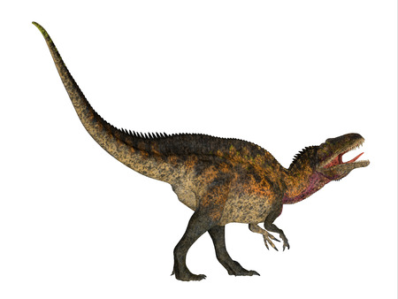 carnivorous: Acrocanthosaurus Side Profile - Acrocanthosaurus was a theropod carnivorous dinosaur that lived in North America during the Cretaceous Period.