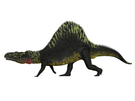 triassic: Arizonasaurus Side Profile - Arizonasaurus was a sailback carnivorous archosaur that lived in Arizona, North America in the Triassic Period.