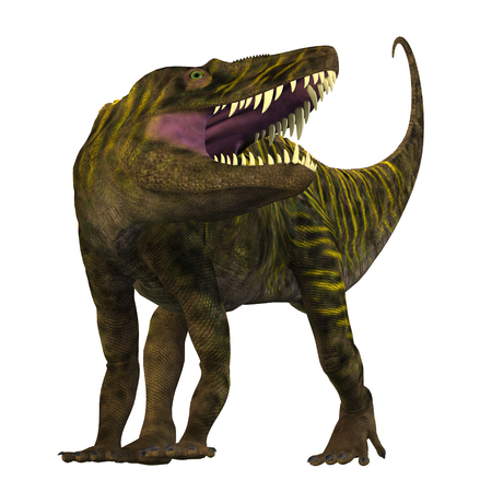 triassic: Batrachotomus on White - Batrachotomus was a carnivorous archosaur predator that lived in Germany during the Triassic Period.