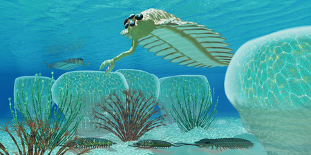 arthropods: Ocean Opabinia - Trilobites try to hide from predator Opabinia in a Cambrian sea full of stromatolites.