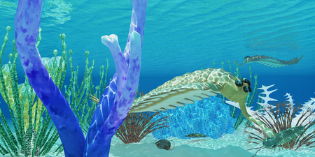 proboscis: Opabinia eats Trilobite - The predator Opabinia uses its proboscis to eat a trilobite in a Cambrian ocean. Stock Photo