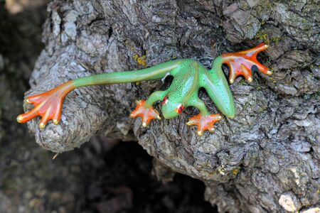 tiny frog: Ornamental Green Orange Frog - This ornamental green frog statue with orange feet is decorated with tiny small black spots.