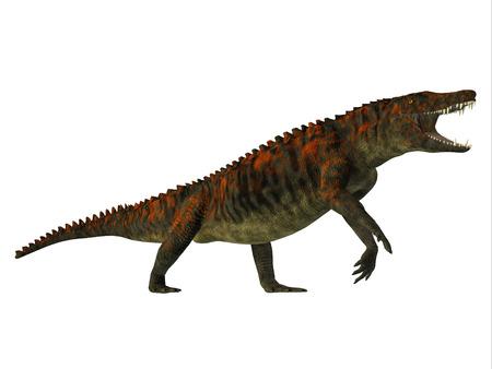 cretaceous: Uberabasuchus Side Profile - Uberabasuchus was an archosaur carnivorous crocodile that lived in the Cretaceous Period of Brazil.