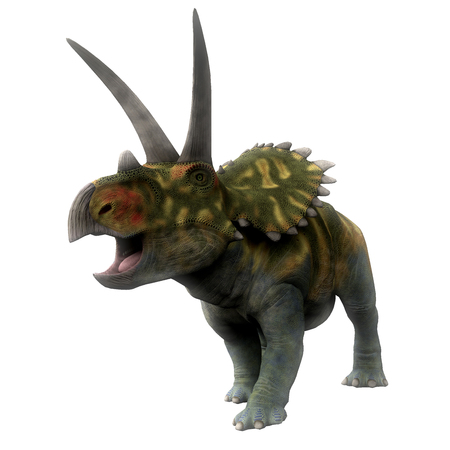 behemoth: Coahuilaceratops Dinosaur on White - Coahuilaceratops was a ceratopsian herbivorous dinosaur that lived in the Cretaceous Period of Mexico. Stock Photo
