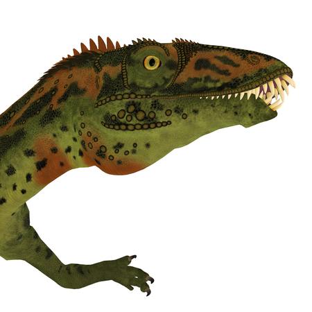 cretaceous: Masiakasaurus Dinosaur Head - Masiakasaurus was a theropod dinosaur that lived in Madagascar during the Cretaceous period.