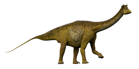 Nigersaurus Side Profile - Nigersaurus was a sauropod herbivorous dinosaur that lived in the Republic of Niger, Africa during the Cretaceous Period. Stock Photo