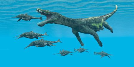 mesozoic: Nothosaurus attacks Shonisaurus - A carnivorous reptile attacks smaller marine dinosaurs in a Cretaceous ocean. Stock Photo