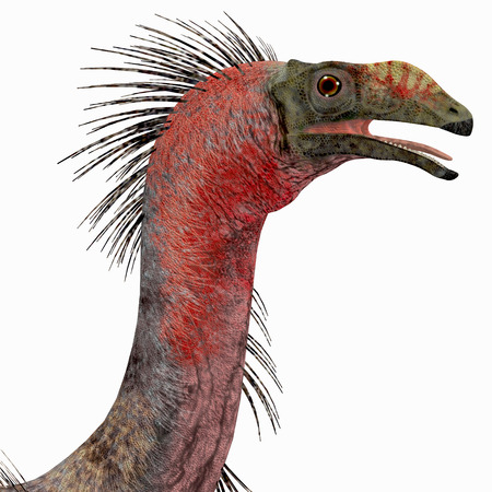 Therizinosaurus Dinosaur Head - Therizinosaurus was a carnivorous theropod dinosaur that lived in the Cretaceous Period of Mongolia. Stock fotó