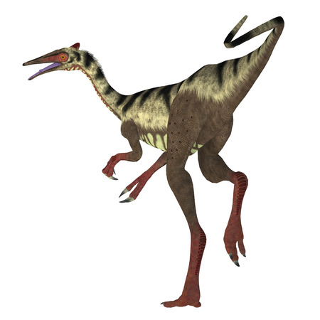 cretaceous: Pelecanimimus Dinosaur Tail - Pelecanimimus was a carnivorous theropod dinosaur that lived in the Cretaceous Period of Spain.