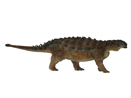 species plate: Pinacosaurus Dinosaur Side Profile - Pinacosaurus was a herbivorous ankylosaur that lived in the Cretaceous Period of Mongolia and China.