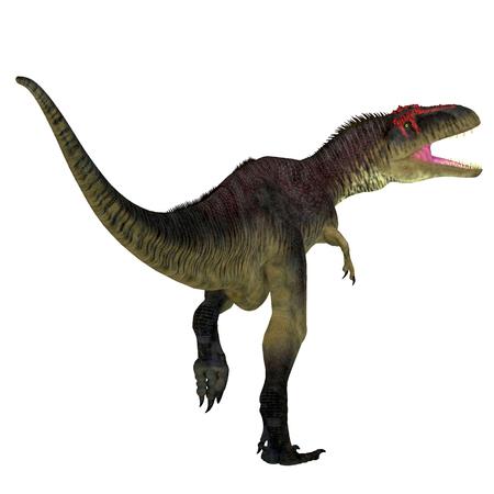 cretaceous: Tyrannotitan Dinosaur Tail - Tyrannotitan was a carnivorous theropod dinosaur that lived in the Cretaceous Period of Argentina. Stock Photo