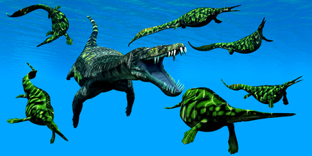mesozoic: Nothosaurus Marine Reptile - A Nothosaurus marine reptile attacks a pod of Hepehsuchus dinosaurs in a Triassic Ocean. Stock Photo