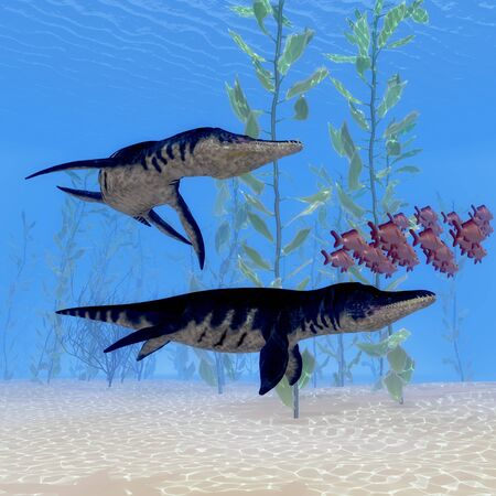 after school: Liopleurodon Marine Reptile - Two Liopleurodon marine reptiles chase after a school of Red Snapper fish in Jurassic Seas. Stock Photo
