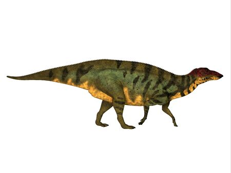 Shuangmiaosaurus Side Profile - Shuangmiaosaurus was a herbivorous iguanodont dinosaur that lived in China in the Cretaceous Period.