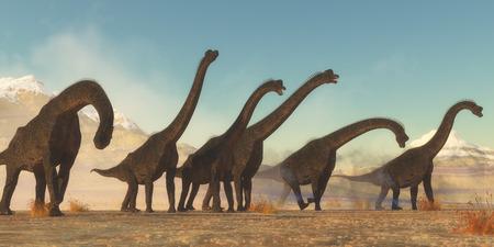 Brachiosaurus Dinosaur Herd - A Brachiosaurus dinosaur herd pass through a dry desert area in the Jurassic Period of North America. Stock Photo