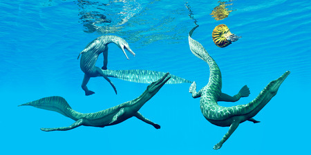 Mesosaurus Marine Reptiles - Mesosaurus reptiles go after an Ammonite which was a frequent prey in the oceans of the Permian Period.