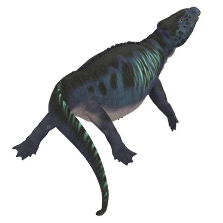 triassic: Placodus Dinosaur Tail - Placodus was a marine reptile that swam in the shallow seas of the Triassic Period in Europe and China.