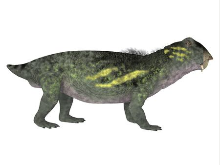 antarctica: Lystrosaurus Side Profile - Lystrosaurus was a dicynodont therapsid dinosaur that lived in the Permian and Triassic Periods of Antarctica, India, Africa, China, Mongolia and Russia.