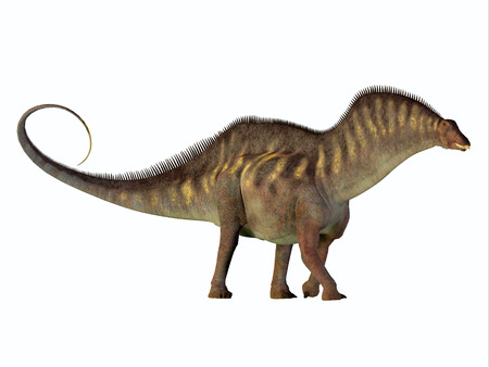 lived: Amargasaurus Side Profile - Amargasaurus was a herbivorous sauropod dinosaur that lived in Argentina in the Cretaceous Period.