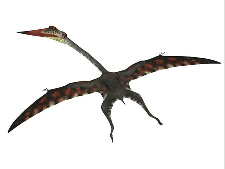 Quetzalcoatlus Flying Reptile - The carnivorous Quetzalcoatlus was a flying pterosaur reptile that lived in North America in the Cretaceous Period. Stock Photo