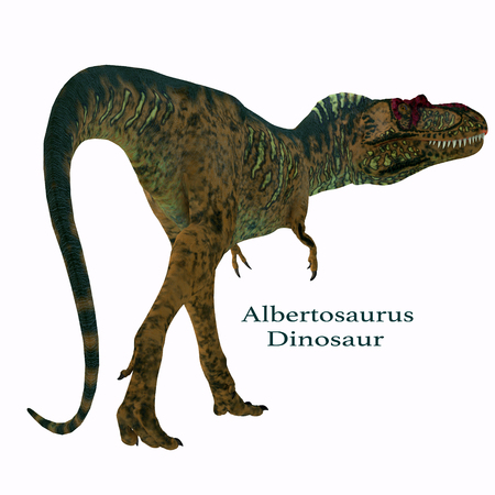 Albertosaurus Dinosaur Tail with Font - Albertosaurus was a carnivorous theropod dinosaur that lived in North America in the Cretaceous Period. Imagens