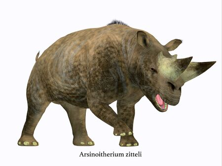 Arsinoitherium Mammal Side Profile with Font - Arsinoitherium was a herbivorous rhinoceros-like mammal that lived in Africa in the Early Oligocene Period. Archivio Fotografico