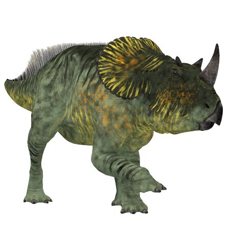 alberta: Brachyceratops is a herbivorous Ceratopsian dinosaur that lived in Alberta, Canada and Montana, USA in the Cretaceous Period. Stock Photo