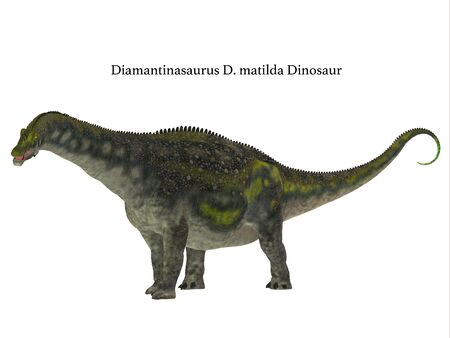 Diamantinasaurus Dinosaur Side Profile with Font - Diamantinasaurus was a herbivorous sauropod dinosaur that lived in Australia during the Cretaceous Period. Stock Photo