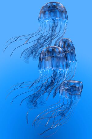 Blue Spotted Jellyfish Movement - Several Blue Spotted jellyfish swim together in a group bloom in clear ocean waters. Stock Photo
